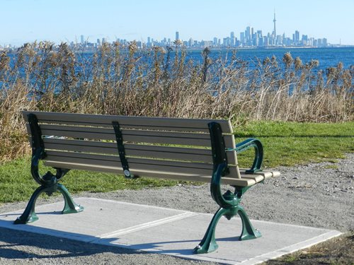 City-of-Toronto-bench-(1).jpg